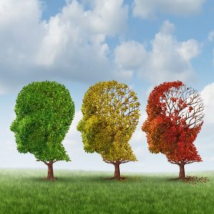 Hospice Care in Santee SC: Late Stage Dementia